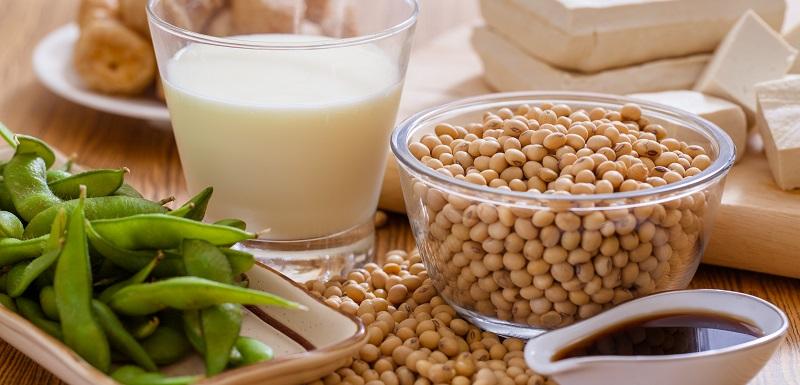 Du soja contre l'ostéoporose